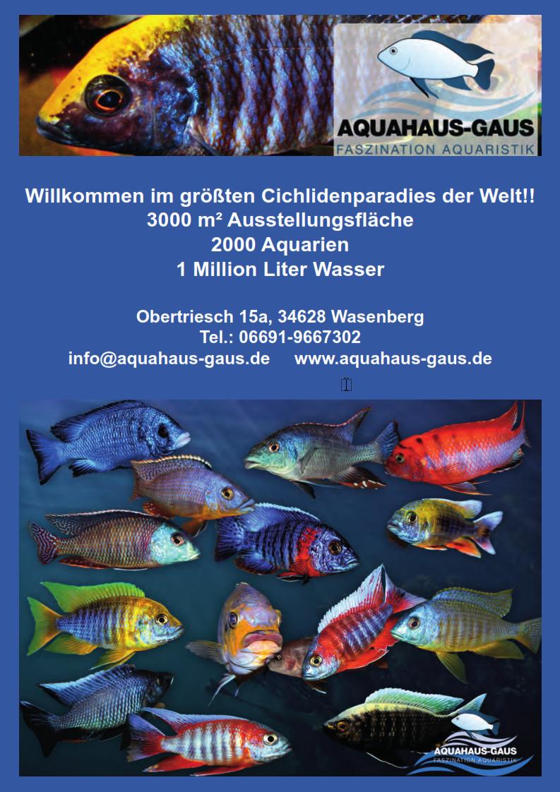 Wir danken unserem Werbepartner, Aquahaus Gaus
