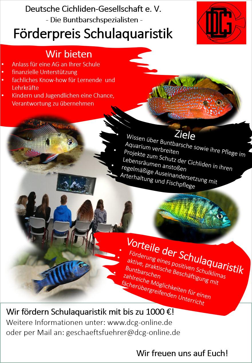 deutsche cichlidengesellschaft ev plakat schulaquaristik 2021
