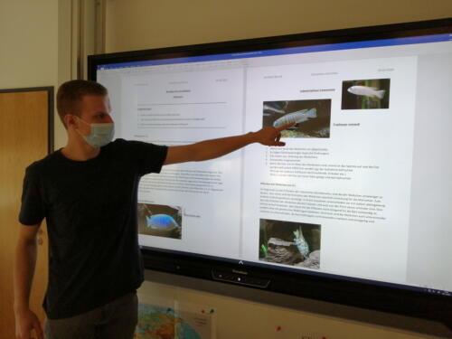 dcg-foerderpreis-schulaquaristik-2021-dillenburg-11-schülerreferat über die bedeutung de eiflecke bei mbuna cichliden